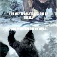 In Skyrim that's just how it works 200x200